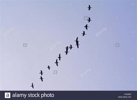 Orant High Resolution Stock Photography and Images - Alamy